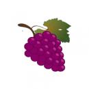 Demo de Vinhos