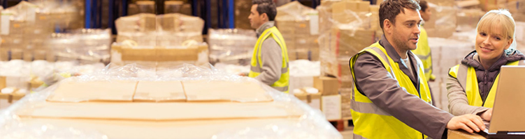 Flow Logistic, Gestor de Produção, Logística, Industrial, Inventário, WMS, Warehouse Management System, Armazém