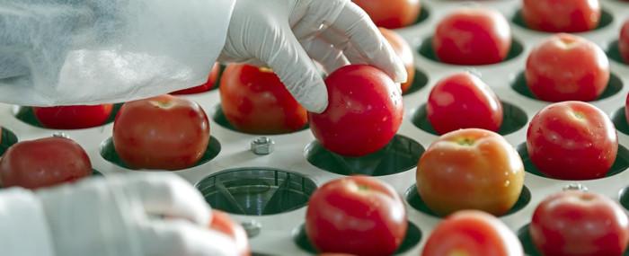 A importância da rastreabilidade na indústria alimentar