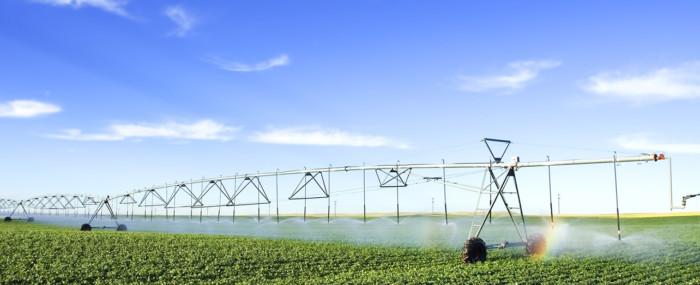 Agro-indústria e Tecnologia: Oportunidades e Desafios da Digitalização