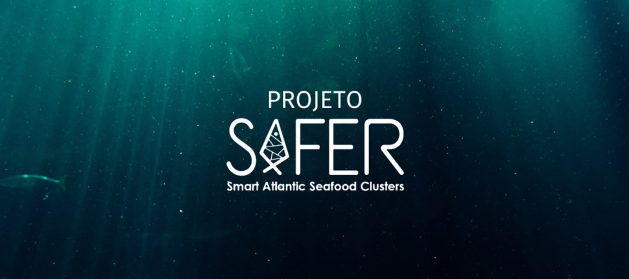 Flow Technology participa no projeto europeu SAFER